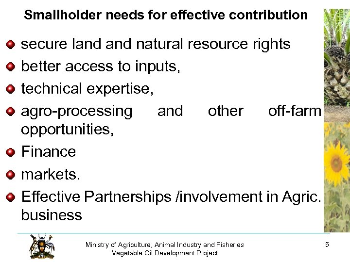 Smallholder needs for effective contribution secure land natural resource rights better access to inputs,