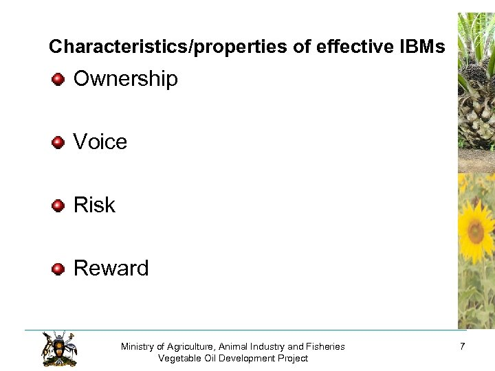 Characteristics/properties of effective IBMs Ownership Voice Risk Reward Ministry of Agriculture, Animal Industry and