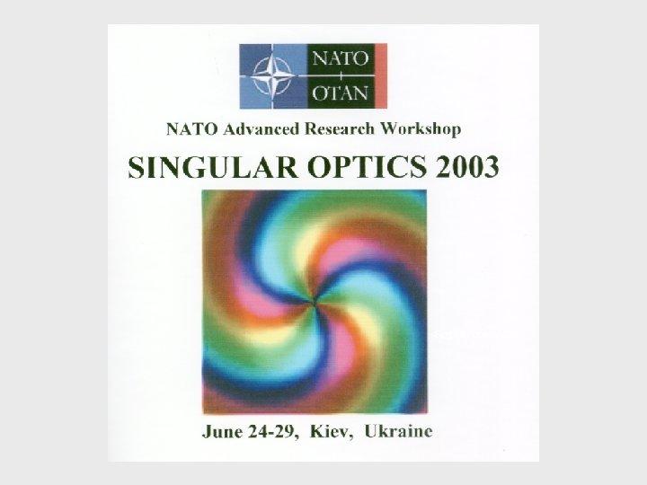 Singular optics 2003