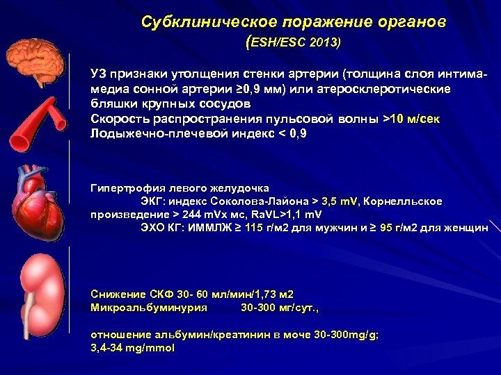 Субклиническое поражение органов (ESH/ESC 2013) УЗ признаки утолщения стенки артерии (толщина слоя интимамедиа сонной