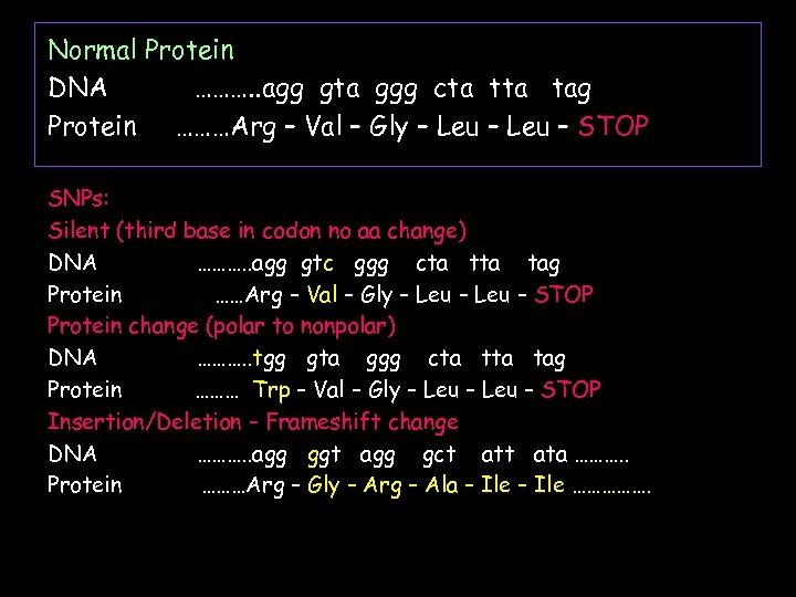 Normal Protein DNA ………. . agg gta ggg cta tag Protein ………Arg – Val