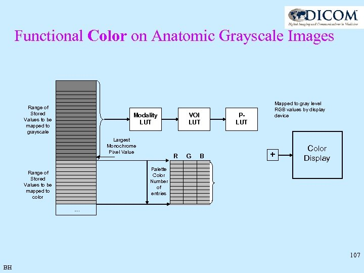 Functional Color on Anatomic Grayscale Images Range of Stored Values to be mapped to