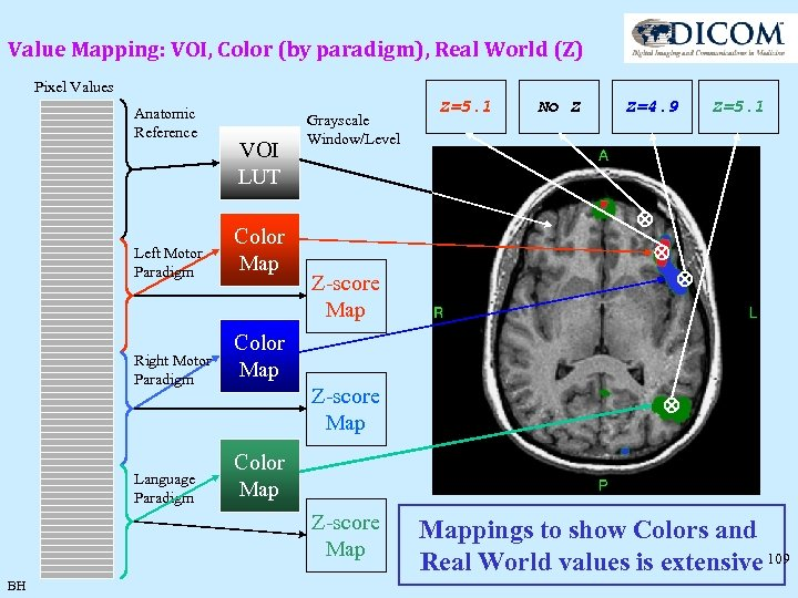 Value Mapping: VOI, Color (by paradigm), Real World (Z) Pixel Values Anatomic Reference VOI