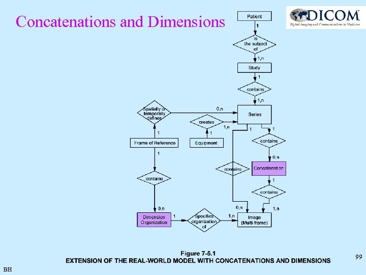 Concatenations and Dimensions 99 BH