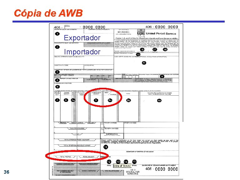 Cópia de AWB Exportador Importador 36