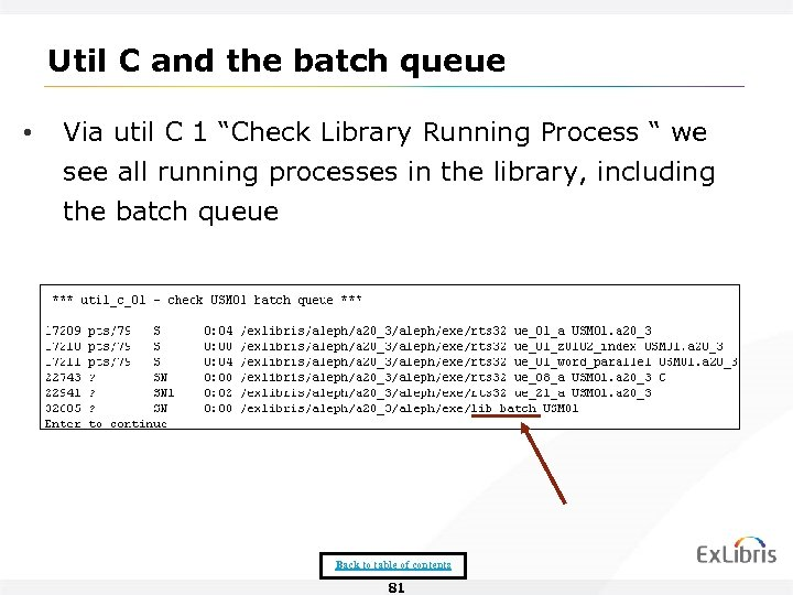 "Util C and the batch queue • Via util C 1 ""Check Library Running"