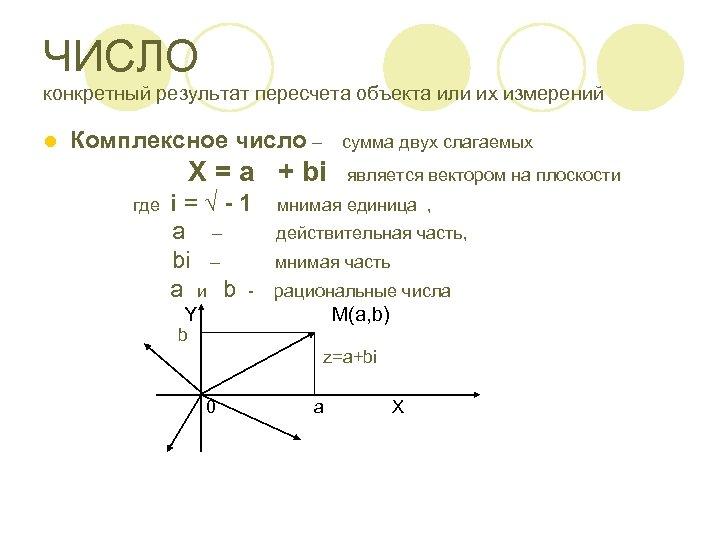 ЧИСЛО конкретный результат пересчета объекта или их измерений l Комплексное число – сумма двух
