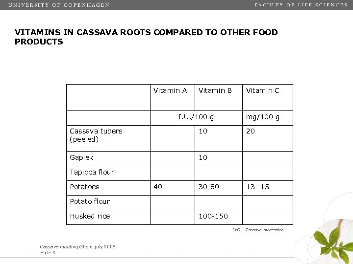 VITAMINS IN CASSAVA ROOTS COMPARED TO OTHER FOOD PRODUCTS Vitamin A Vitamin B I.