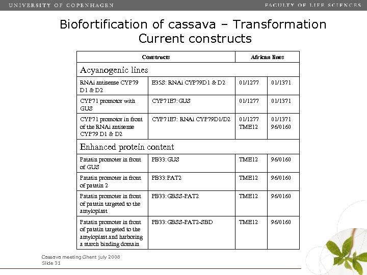 Biofortification of cassava – Transformation Current constructs Constructs African lines Acyanogenic lines RNAi antisense