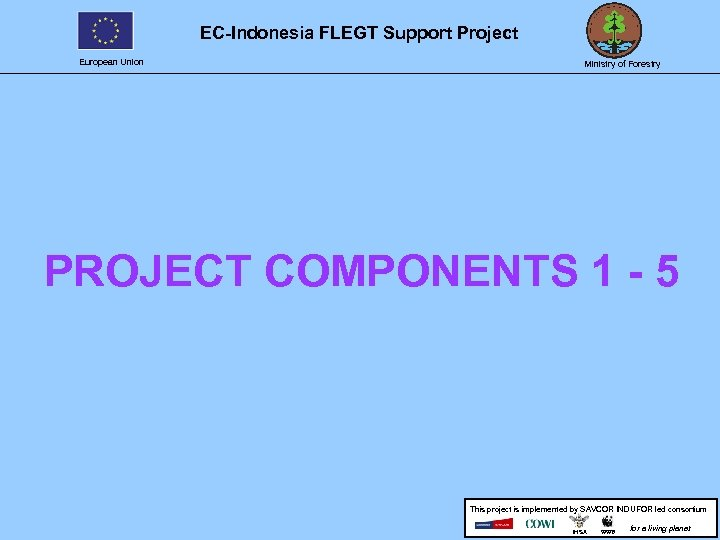 EC-Indonesia FLEGT Support Project European Union Ministry of Forestry PROJECT COMPONENTS 1 - 5
