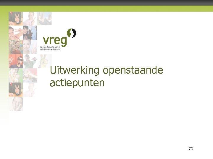 Uitwerking openstaande actiepunten Vlaamse Regulator van de Elektriciteits- en Gasmarkt 73
