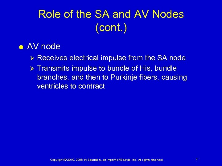Role of the SA and AV Nodes (cont. ) AV node Receives electrical impulse