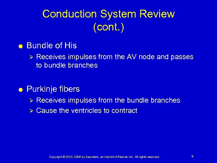 Conduction System Review (cont. ) Bundle of His Ø Receives impulses from the AV