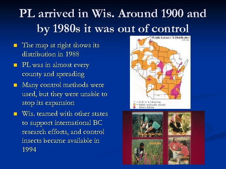 PL arrived in Wis. Around 1900 and by 1980 s it was out of