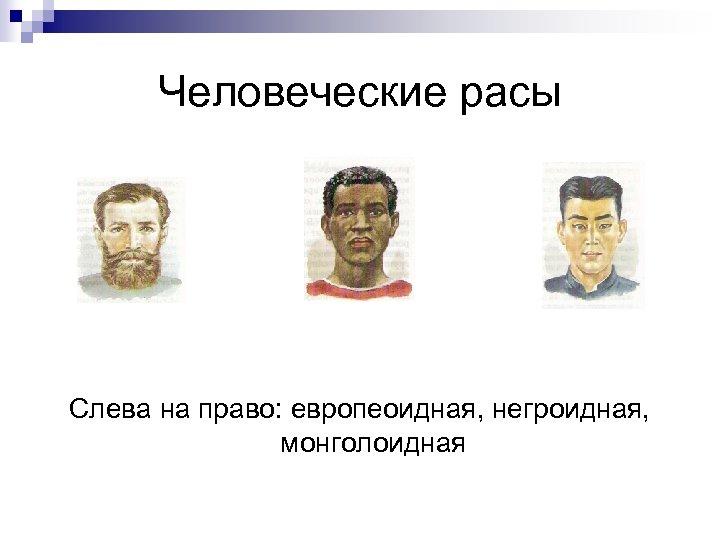 Человеческие расы Слева на право: европеоидная, негроидная, монголоидная