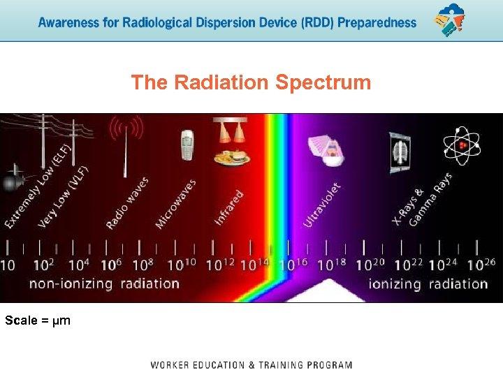 The Radiation Spectrum Scale = µm