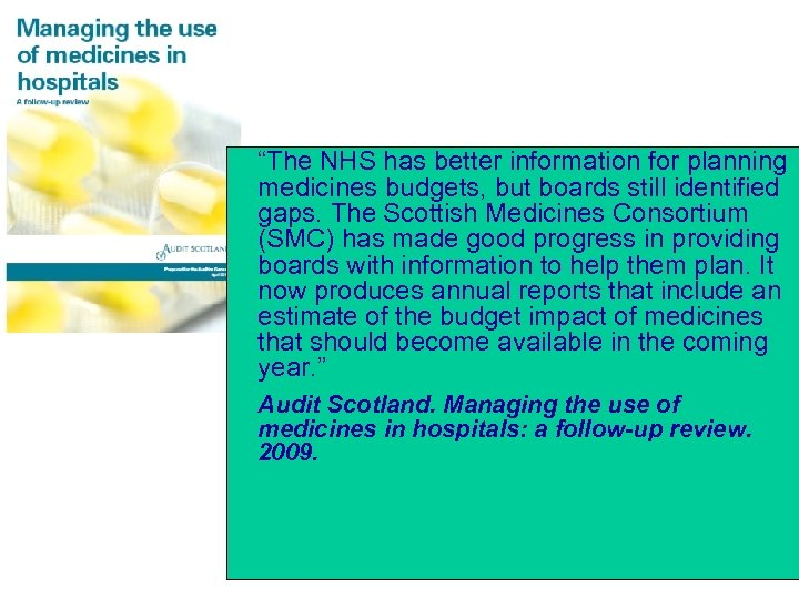 """""""The NHS has better information for planning medicines budgets, but boards still identified gaps."""