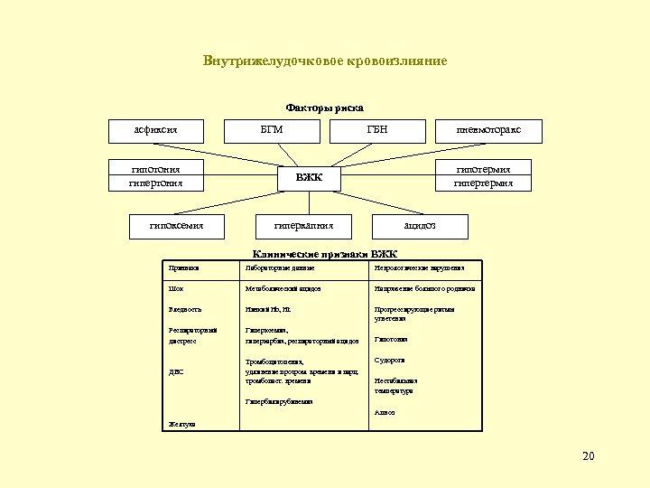 Внутрижелудочковое кровоизлияние Факторы риска асфиксия гипотония гипертония гипоксемия БГМ ГБН пневмоторакс гипотермия гипертермия ВЖК
