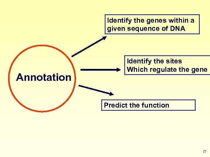 Identify the genes within a given sequence of DNA Annotation Identify the sites Which