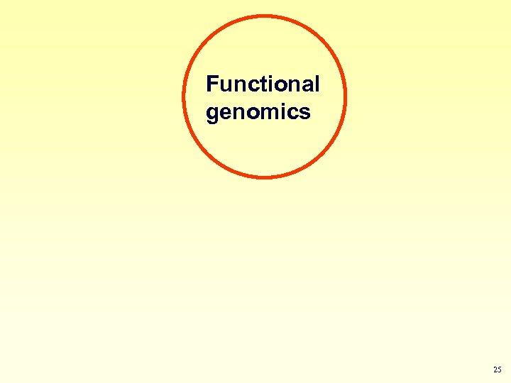 Functional genomics 25