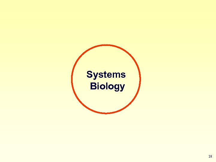Systems Biology 28