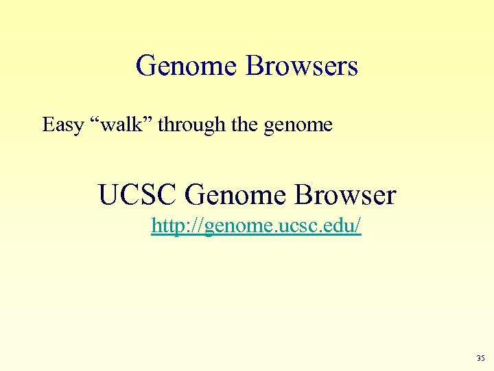 "Genome Browsers Easy ""walk"" through the genome UCSC Genome Browser http: //genome. ucsc. edu/"