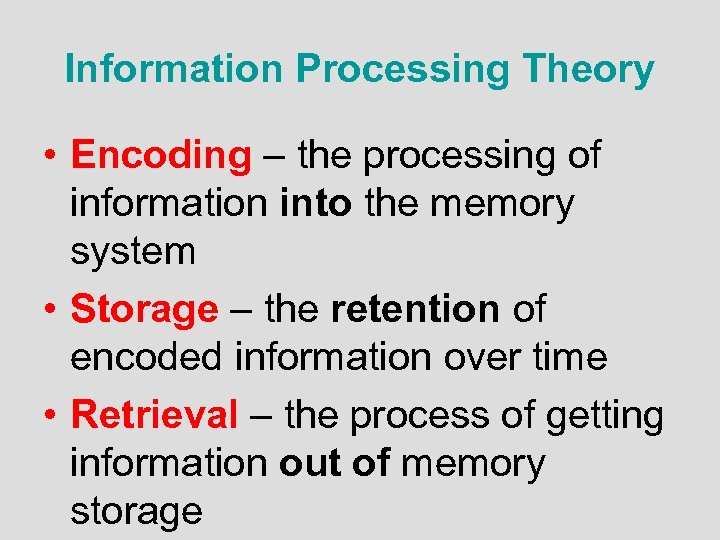Information Processing Theory • Encoding – the processing of information into the memory system