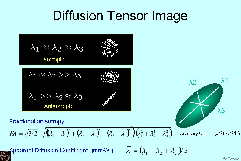 Diffusion Tensor Image Isotropic λ 2 Anisotropic λ 1 λ 3 Fractional anisotropy Arbitrary