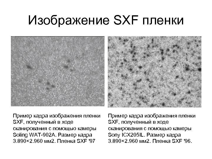 Изображение SXF пленки Пример кадра изображения пленки SXF, полученный в ходе сканирования с помощью