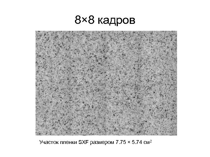 8× 8 кадров Участок пленки SXF размером 7. 75 × 5. 74 см 2