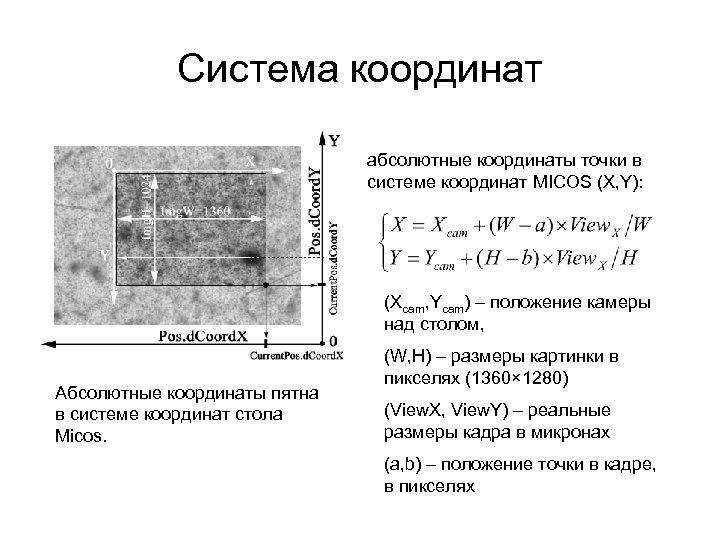 Система координат абсолютные координаты точки в сиcтеме координат MICOS (X, Y): (Xcam, Ycam) –