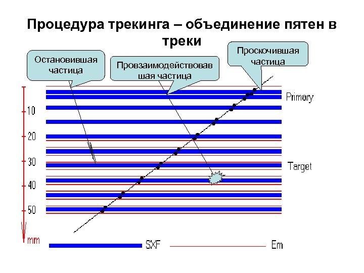 Процедура трекинга – объединение пятен в треки Остановившая частица Провзаимодействовав шая частица Проскочившая частица