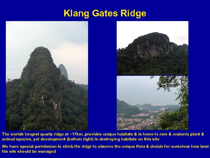 Klang Gates Ridge The worlds longest quartz ridge at ~17 km, provides unique habitats