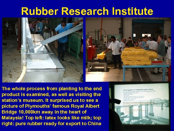 Rubber Research Institute The whole process from planting to the end product is examined,