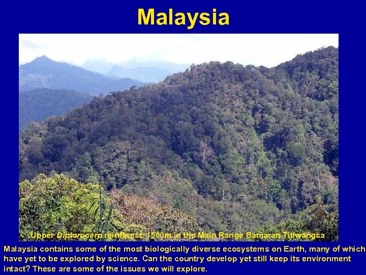 Malaysia . Upper Dipterocarp rainforest. 1500 m in the Main Range Banjaran Titiwangsa Malaysia