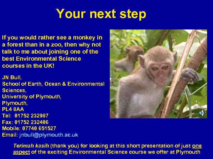 Your next step If you would rather see a monkey in a forest than