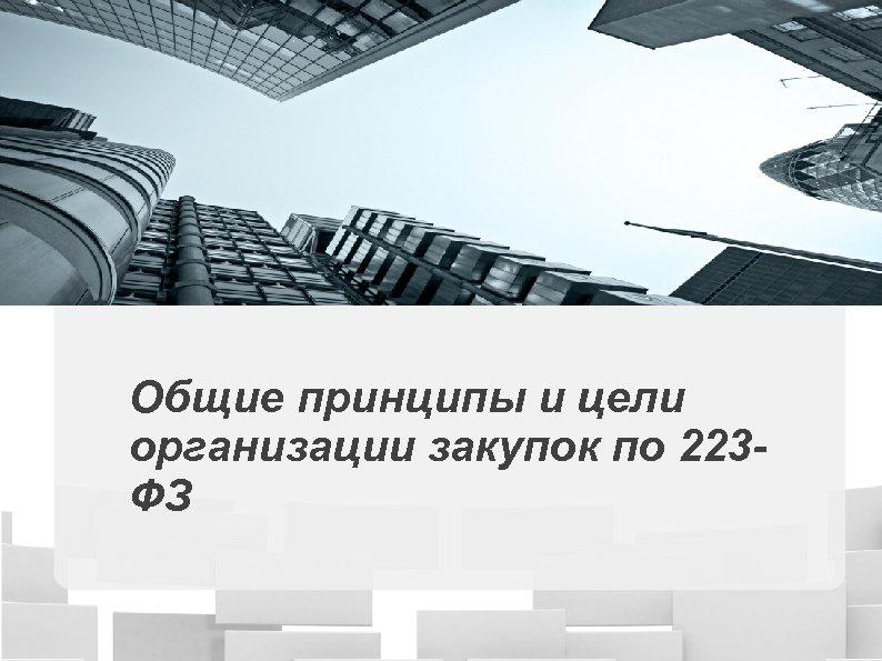 Общие принципы и цели организации закупок по 223 ФЗ