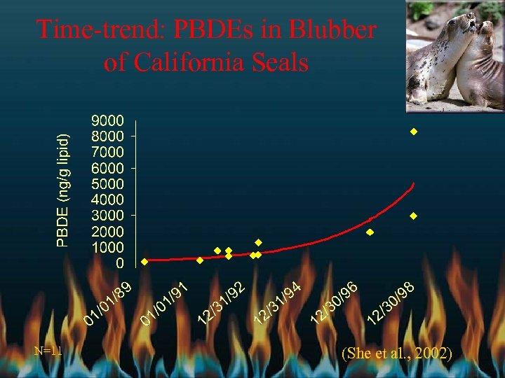 Time-trend: PBDEs in Blubber of California Seals N=11 (She et al. , 2002)