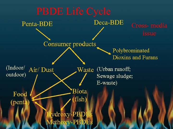PBDE Life Cycle Deca-BDE Penta-BDE Consumer products (Indoor/ Air/ Dust outdoor) Food (penta) Cross-