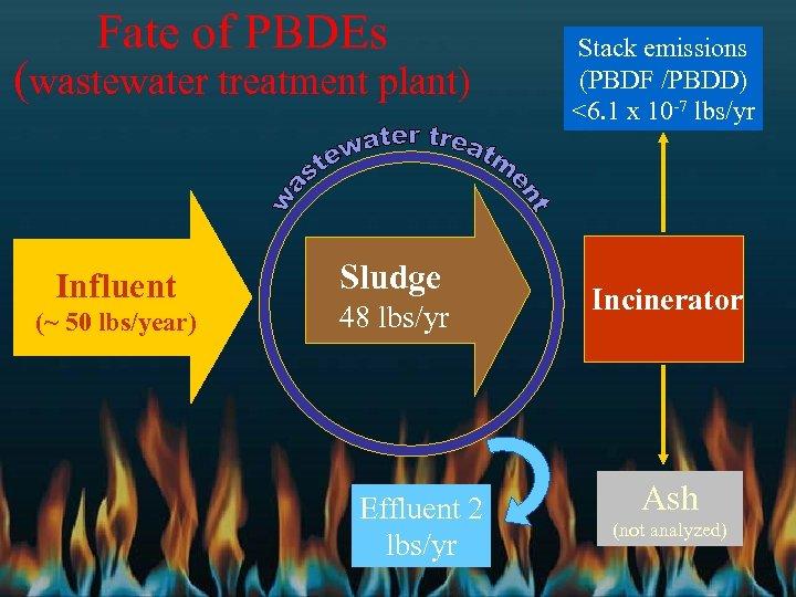 Fate of PBDEs (wastewater treatment plant) Influent (~ 50 lbs/year) Sludge 48 lbs/yr Effluent