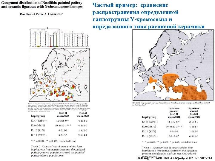 Частый пример: сравнение распространения определенной гаплогруппы Y-хромосомы и определенного типа расписной керамики R. King,
