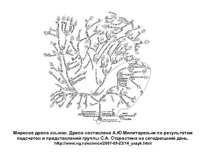 Мировое древо языков. Древо составлено А. Ю. Милитаревым по результатам подсчетов и представлений группы