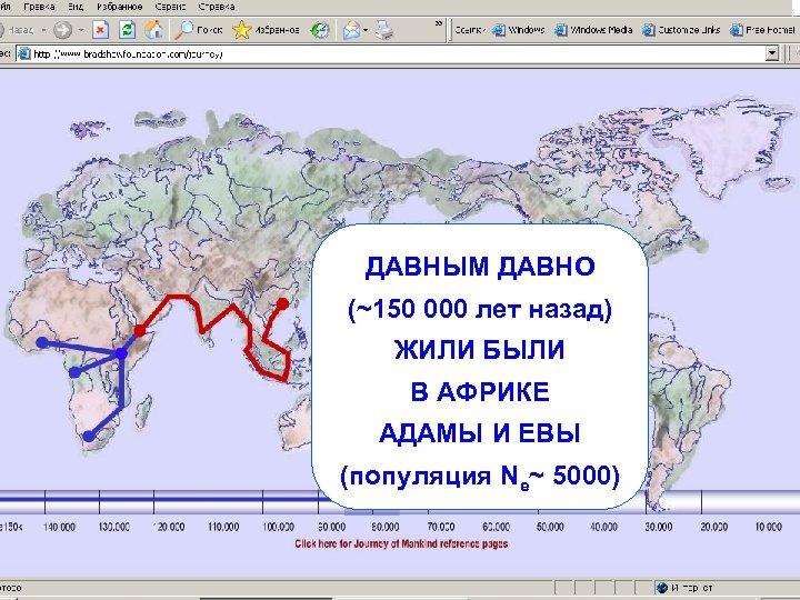 ДАВНЫМ ДАВНО (~150 000 лет назад) ЖИЛИ БЫЛИ В АФРИКЕ АДАМЫ И ЕВЫ (популяция