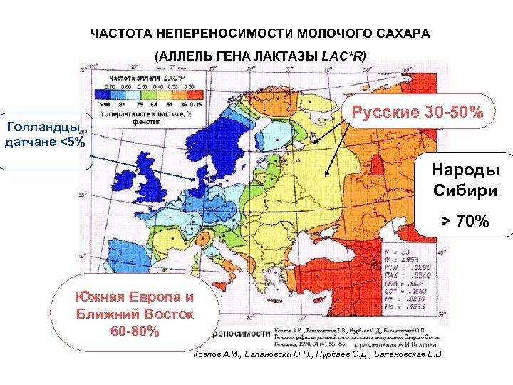 ЧАСТОТА НЕПЕРЕНОСИМОСТИ МОЛОЧОГО САХАРА (АЛЛЕЛЬ ГЕНА ЛАКТАЗЫ LAC*R) Русские 30 -50% Голландцы, датчане <5%