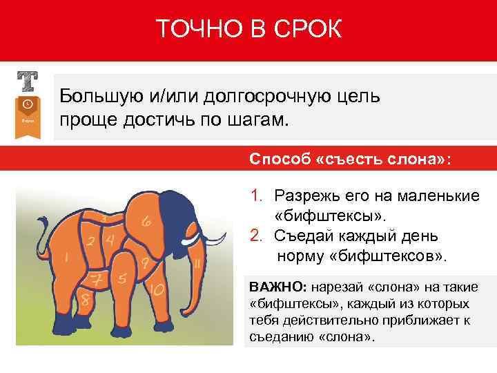 слона нужно есть по частям картинка начинайте рисунок наброска
