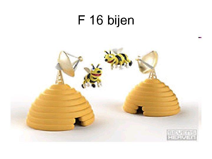 F 16 bijen