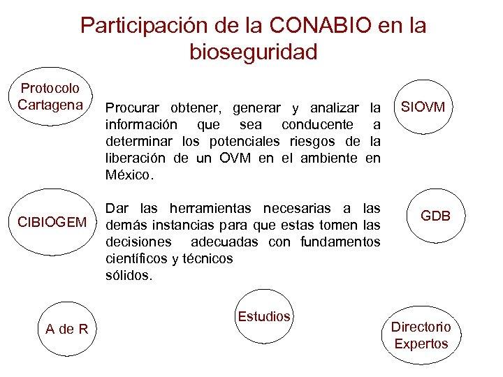 Participación de la CONABIO en la bioseguridad Protocolo Cartagena CIBIOGEM A de R Procurar