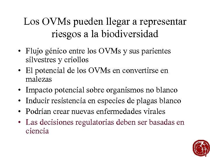 Los OVMs pueden llegar a representar riesgos a la biodiversidad • Flujo génico entre