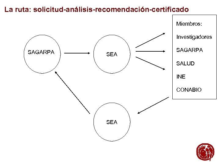 La ruta: solicitud-análisis-recomendación-certificado Miembros: Investigadores SAGARPA SEA SAGARPA SALUD INE CONABIO SEA