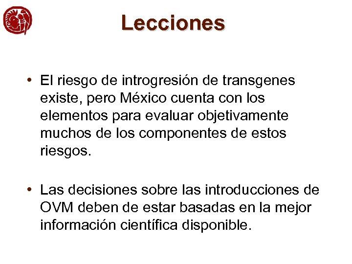 Lecciones • El riesgo de introgresión de transgenes existe, pero México cuenta con los